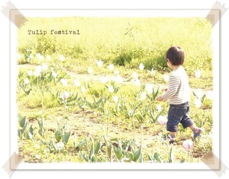 チューリップ祭り20130428①