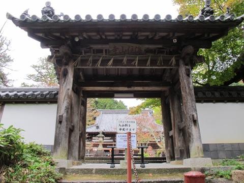 木津川 006