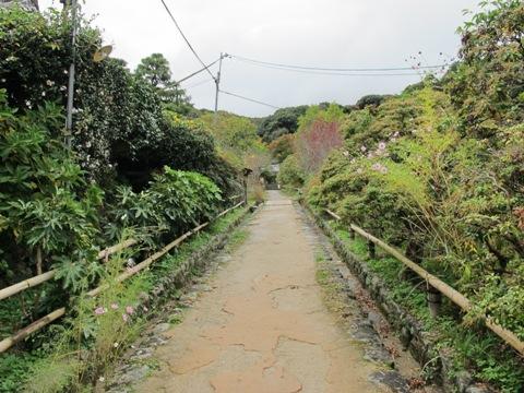 木津川 046