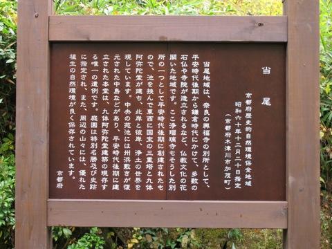 木津川 049