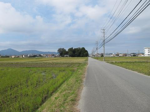 櫛田・南山城 036