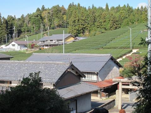 櫛田・南山城 079