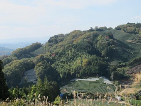 櫛田・南山城 103