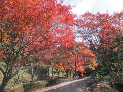 櫛田・南山城 082