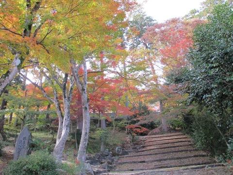 櫛田・南山城 106