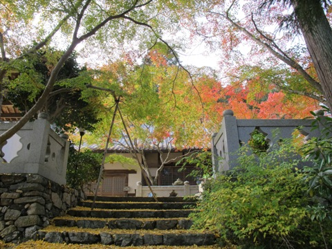 櫛田・南山城 108