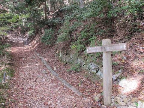 櫛田・南山城 132