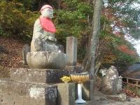 中尊寺リハビリの菊祭り&紅葉2014-11-10-006