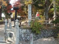 中尊寺リハビリの菊祭り&紅葉2014-11-10-003