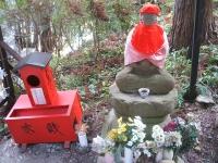 中尊寺リハビリの菊祭り&紅葉2014-11-10-015