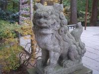 中尊寺リハビリの菊祭り&紅葉2014-11-10-025