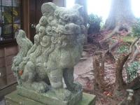 中尊寺リハビリの菊祭り&紅葉2014-11-10-024