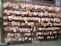 中尊寺リハビリの菊祭り&紅葉2014-11-10-028