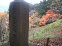 中尊寺リハビリの菊祭り&紅葉2014-11-10-035