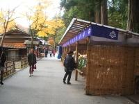 中尊寺リハビリの菊祭り&紅葉2014-11-10-053