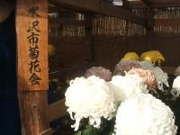 中尊寺リハビリの菊祭り&紅葉2014-11-10-072