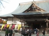 中尊寺リハビリの菊祭り&紅葉2014-11-10-077