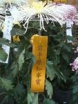 中尊寺リハビリの菊祭り&紅葉2014-11-10-097