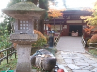 中尊寺リハビリの菊祭り&紅葉2014-11-10-111