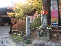 中尊寺リハビリの菊祭り&紅葉2014-11-10-110