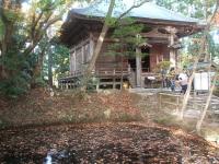 中尊寺リハビリの菊祭り&紅葉2014-11-10-117