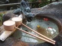 中尊寺リハビリの菊祭り&紅葉2014-11-10-113
