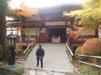 中尊寺リハビリの菊祭り&紅葉2014-11-10-112