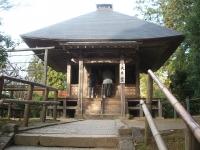 中尊寺リハビリの菊祭り&紅葉2014-11-10-119