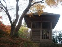 中尊寺リハビリの菊祭り&紅葉2014-11-10-125