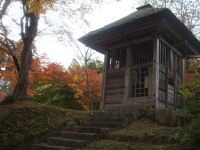 中尊寺リハビリの菊祭り&紅葉2014-11-10-124