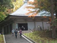 中尊寺リハビリの菊祭り&紅葉2014-11-10-134