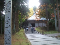 中尊寺リハビリの菊祭り&紅葉2014-11-10-133