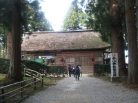 中尊寺リハビリの菊祭り&紅葉2014-11-10-152