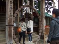 中尊寺リハビリの菊祭り&紅葉2014-11-10-162