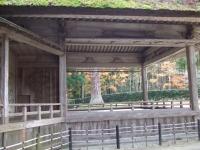 中尊寺リハビリの菊祭り&紅葉2014-11-10-168