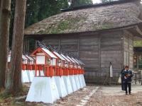 中尊寺リハビリの菊祭り&紅葉2014-11-10-166