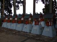 中尊寺リハビリの菊祭り&紅葉2014-11-10-164
