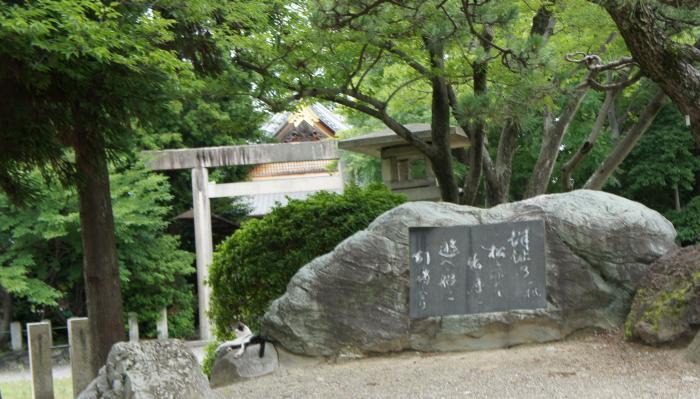 桑名城のねこ01