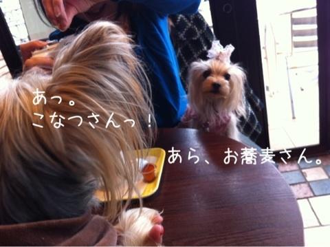 photo:09