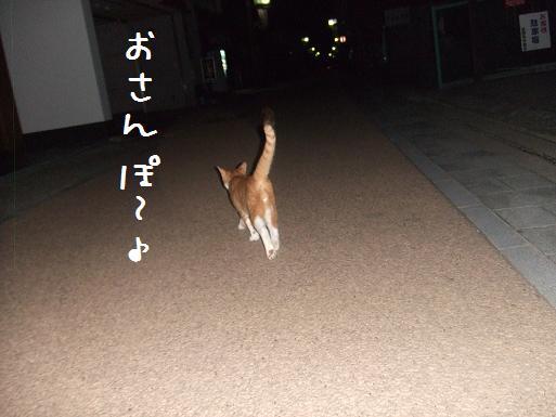 みぃ太脱走8-6②