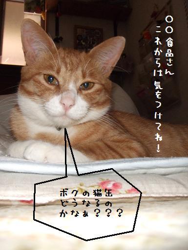 みぃ太猫缶