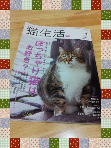 猫生活9月号