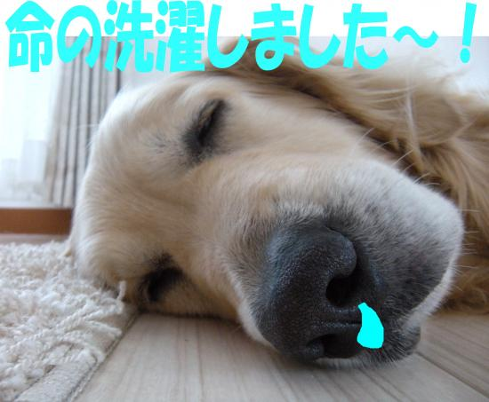 okayama6_convert_20130801080953.jpg