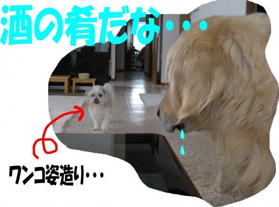 okayama7_convert_20130801081500.jpg