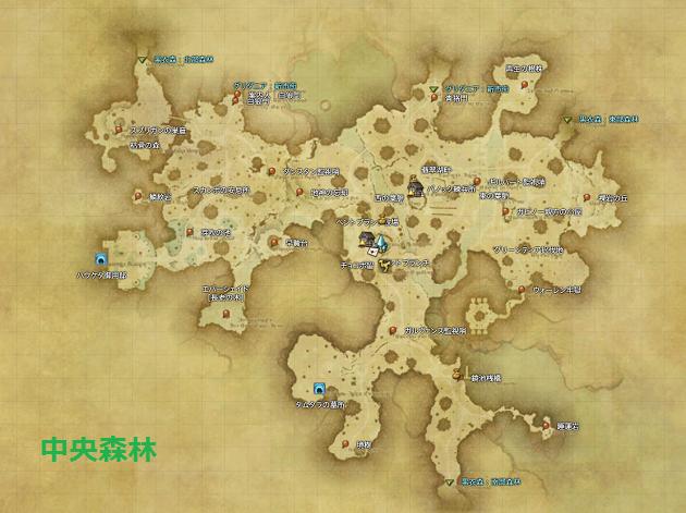 中央森林 全体マップ