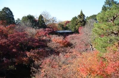 20131130_東福寺-003
