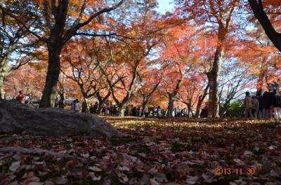20131130_東福寺-005