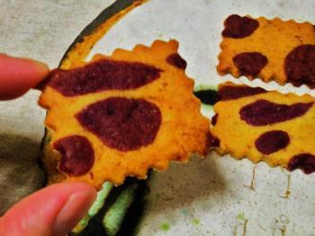 つくりて 10月 紫いもクッキー2