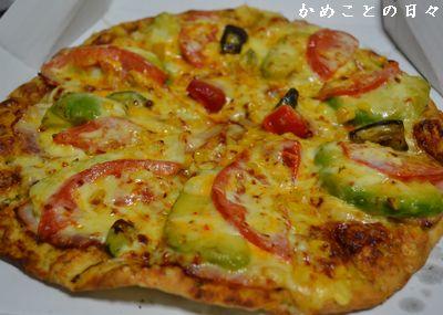 DSC_0088-pizza.jpg