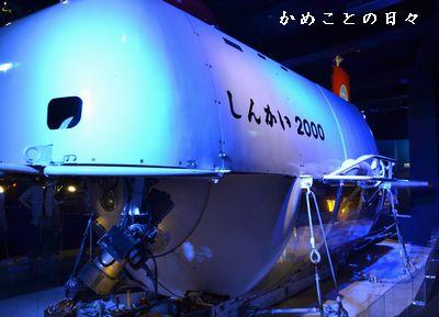 DSC_0368-shin.jpg